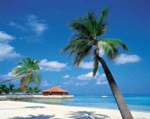 Caribisch strand